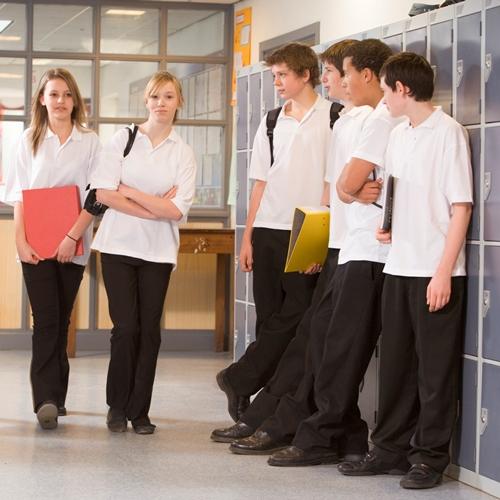 Teenage boys and girls in a school corridor